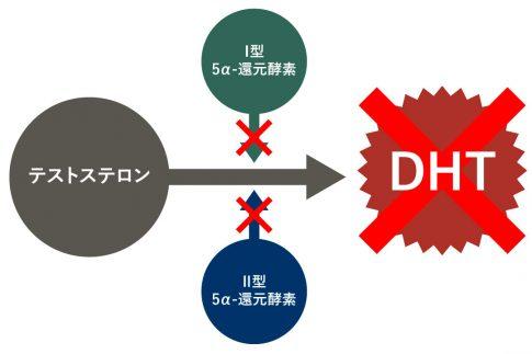 デュタステリド内服薬とは 効果および副作用・服用方法・注意点について
